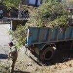 Limpieza y mantenimiento de espacios verdes en la ciudad